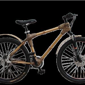 Mountain bike-0